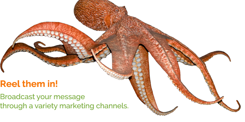 Reel Them In By Broadcasting Your Message Through A Variety Of Marketing Channels.