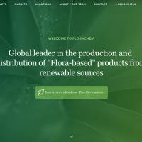 Florachem - chemical company website search engine optimization in Jacksonville FL