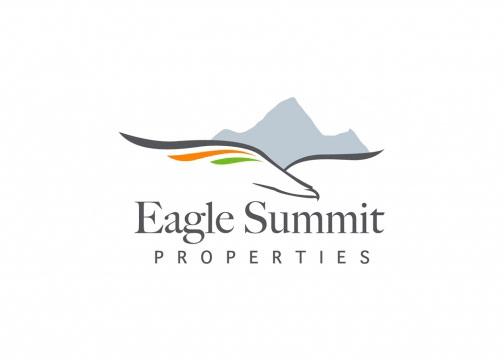 eagle summit logo design