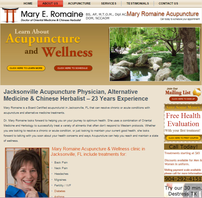 acupuncture marketing mary romaine jacksonville fl